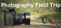 FIELD TRIP - SEEING WITH YOUR CAMERA – PHOTOGRAPHY CONCEPTS