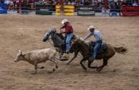 September Field Trip - Davie Rodeo