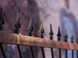 Patterns-in-Photography-Fence-1