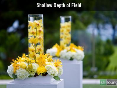 Shallow6