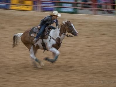 Davie Rodeo