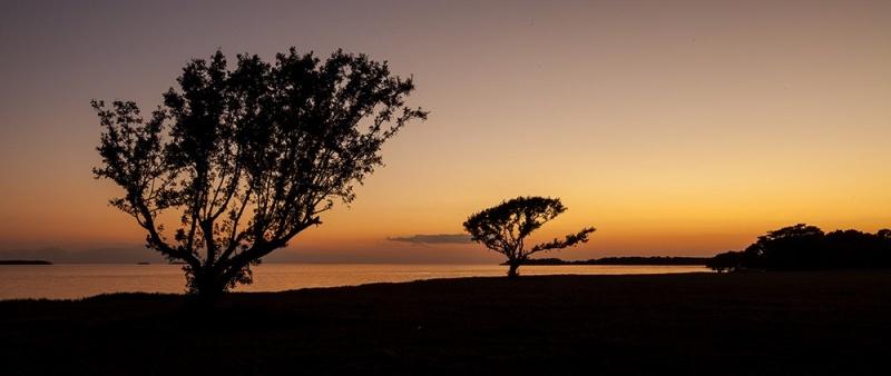 Sunsets -3