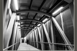 UM Bridge