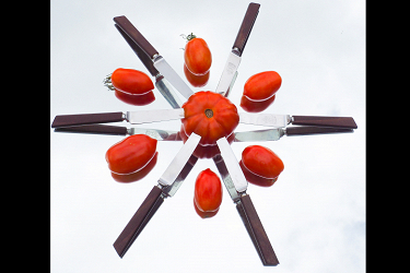 Tomatoes and Knives on a Mirror