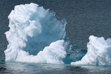 Sparly Iceberg Bits